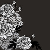 Black background with flowers. Black and white background with flowers royalty free illustration