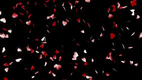 Black background, loop, alpha channels, 4K. Animation of the falling rotating red sparkles in shape of hearts stock video footage
