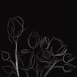 Black background with white roses. (black and white illustration Stock Images