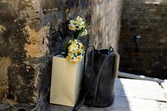 Black bag and flower. Stock Photography