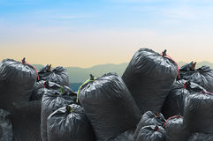 Black bag of rubbish isolated on nature landscape background Royalty Free Stock Photo