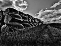 Black bags in a field. Taken in black and white Royalty Free Stock Photos