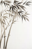 Black bamboo Royalty Free Stock Images