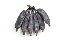 Black banana or rotten banana. Royalty Free Stock Images