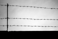 Black barbed wire silhouette on dark sky background Royalty Free Stock Photos