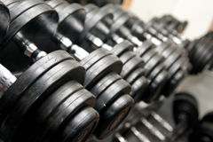 Black Barbells at the gym stock photography