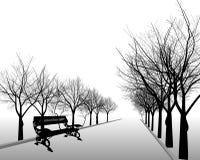 Black bare trees in park Stock Image