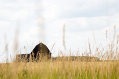 Black Barn in field Stock Photo