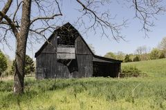 Black barn framed by trees. Black barns are not a common site in rural America. This black barn is framed by trees Royalty Free Stock Photos