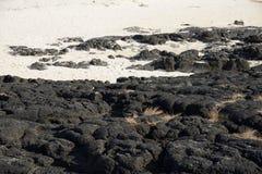 Black basaltic seaside Stock Photo