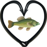 Black bass fishing hooks. Hooks to heart fishing predatory fish Stock Images