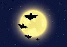 Black bats on full moon background Stock Photos