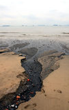 Black beach. A beach is being polluted by the waste water in Xiamen. The beach is turning to black Royalty Free Stock Images