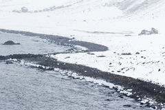 A black beach, ice, snow Royalty Free Stock Photography