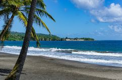 Black beach with palms in the foreground on Basse-Terre, Guadeloupe royalty free stock images