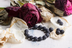 Black beads with dry roses Stock Images