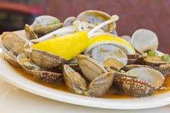 Black Bean Clams Stock Images