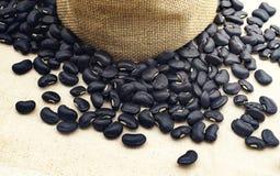 Black bean with fabic blackground Royalty Free Stock Photo