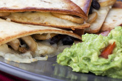 Black Bean Quesadillas royalty free stock photo