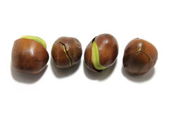 Black Bean Seeds Royalty Free Stock Photo