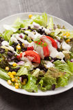 Black Bean Southwest Salad with various toppings Stock Image