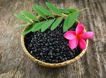 Black beans basket Royalty Free Stock Photo