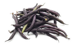 Black beans pods Stock Photography