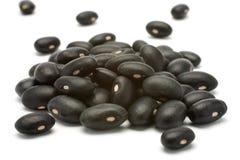 Black beans - preto Stock Photography