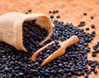Black beans  on wooden background Stock Images