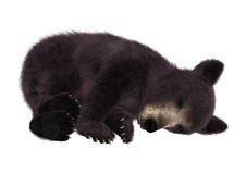 Black Bear Cub. 3D digital render of a black bear cub isolated on white background Royalty Free Stock Photo