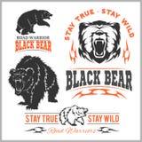 Black bear for logo, sport team emblem, design elements and labels Stock Images