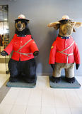 Black bear and moose dressed in Royal Canadian Mounted Police uniform in Jasper National Park Stock Images