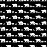 Black Bear Polar Bear Seamless Pattern walk isolated wallpaper background royalty free illustration