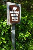 Black Bear Warning Stock Image