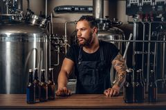 Black man manufacturer presenting craft beer in the microbrewery. Black bearded tattooed hipster male manufacturer presenting craft beer in the microbrewery royalty free stock images