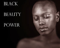 Black,Beauty and Power Royalty Free Stock Photos