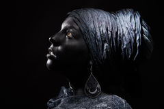 Black beauty Stock Images