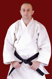 Black belt. Martial arts athlete tying the knot to his black belt Royalty Free Stock Photography