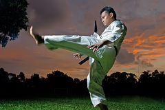 Black belt karateka Stock Images