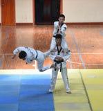 Black belt superiors of Taekwondo Stock Image