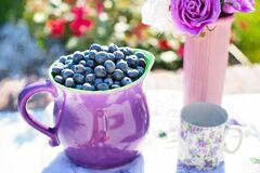 Black Berries on Purple Container Beside White and Purple Floral Mug Royalty Free Stock Photo