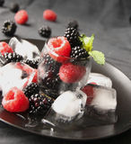 Black berries and raspberries in a glass cup Stock Image