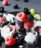 Black berries and raspberries in a glass cup Stock Photography