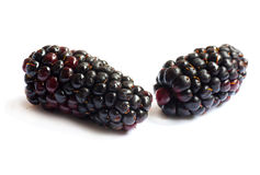 Black Berries on white Stock Photos