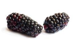 Black Berries on white Stock Photos