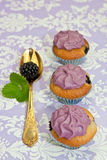 Black berry cupcakes for a party Royalty Free Stock Photography