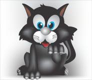 Black bighead cat Royalty Free Stock Image