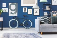 Black bike in living room. Black and green bike against dark blue wall with posters in living room interior with grey sofa Royalty Free Stock Photography