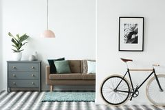 Black bike in living room. Black bike under poster in living room interior with brown settee next to a grey cabinet with plant Stock Photography