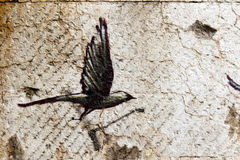 Black bird in flight Royalty Free Stock Images